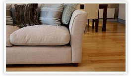 Upholstery Cleaning Milton Ontario